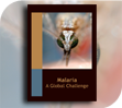 resources_icons_malaria