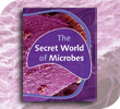 The Secret World of Microbes