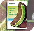 Cholera: Death by diarrhoea